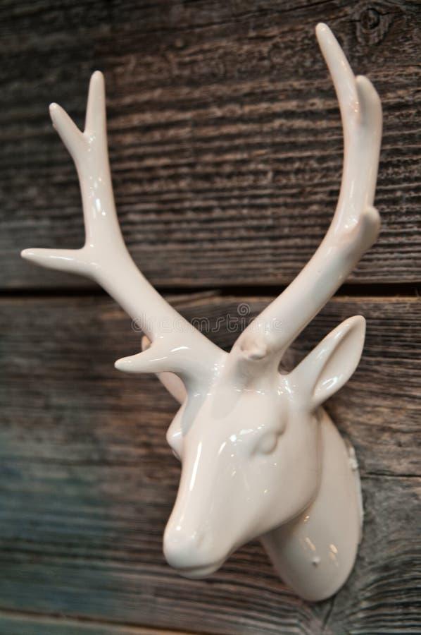 Vit keramisk head garnering för hjortar eller för ren fotografering för bildbyråer