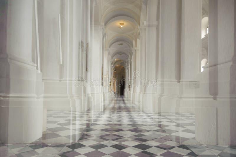 Vit kolonnad i en kyrka royaltyfria bilder