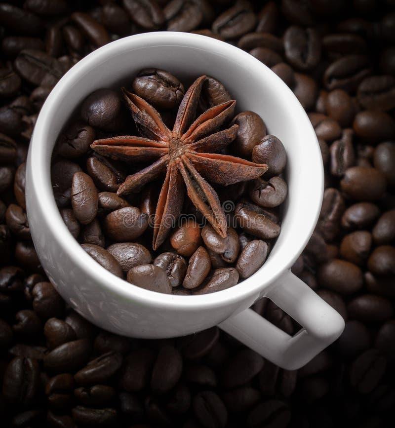 Vit kopp med kaffebönor och stjärnaanis arkivfoton