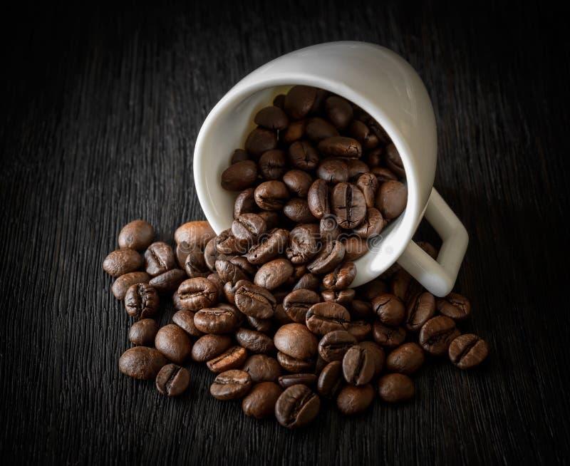 Vit kopp med kaffebönor på mörk träbakgrundsnärbild royaltyfria bilder