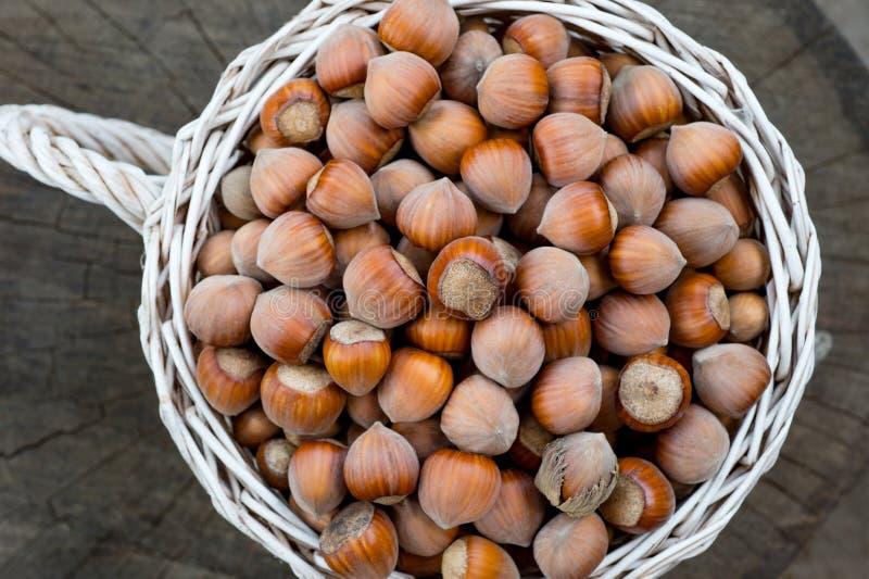 Vit korg av hasselnötter på gammal stubbebakgrund royaltyfri bild