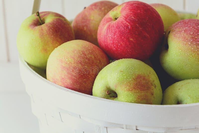 Vit korg med röda och gröna äpplen på framdel av den vita träväggen Hösten låter vara kanten med olika grönsaker på vit bakgrund royaltyfri bild