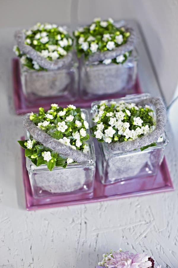 Vit krukafilt för blommor arkivbilder