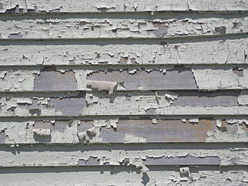 Vit målarfärg för skalning på panelbrädor arkivfoton