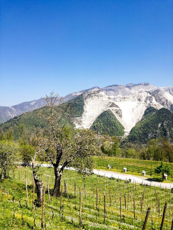 Vit marmor bryter sten, Codena, Carrara, Italien royaltyfri foto