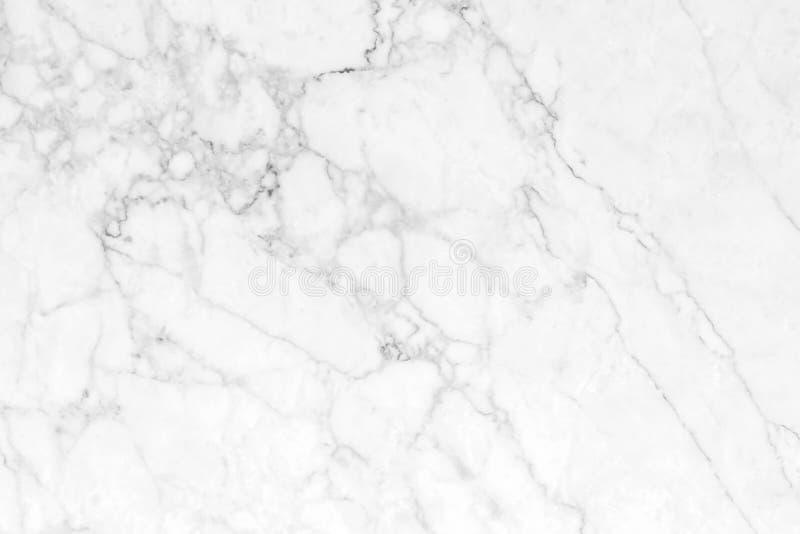 Vit marmor med naturliga modeller som används för bakgrunden arkivbild