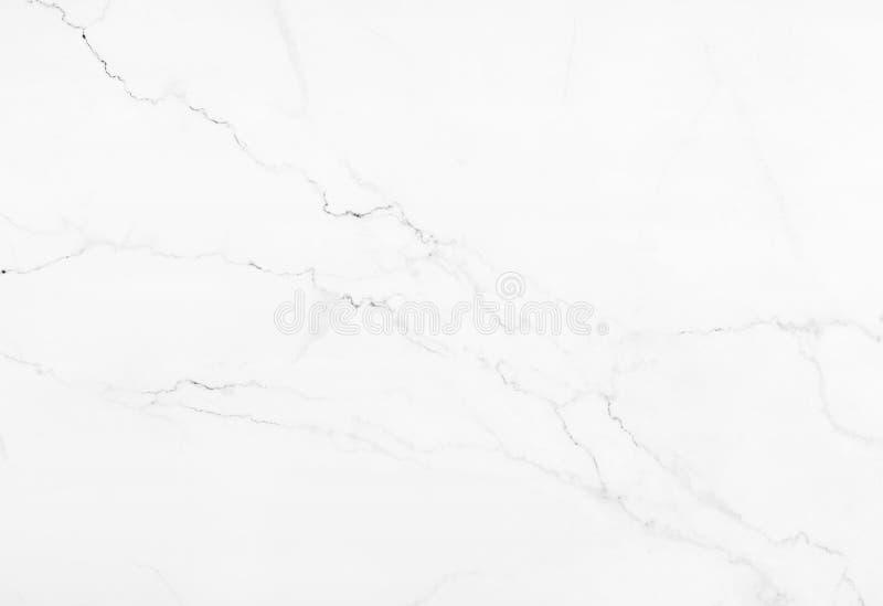 Vit marmorbakgrund vektor illustrationer