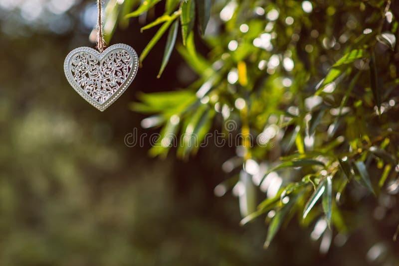 Vit metall och trähjärtor som hänger i naturen, berömförälskelse royaltyfri bild