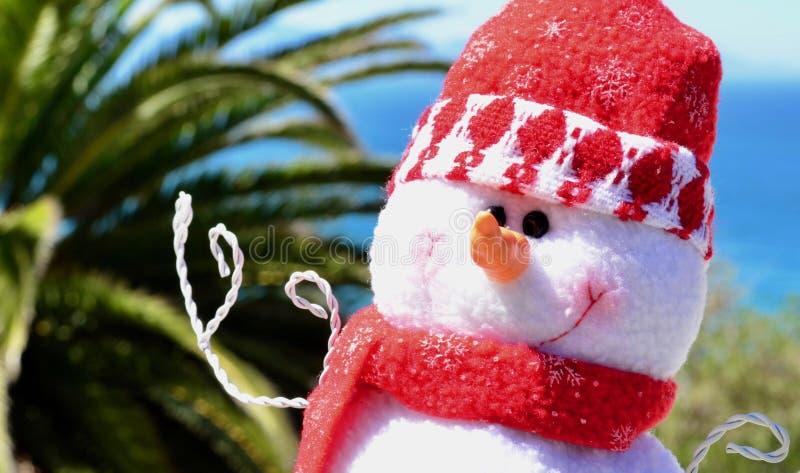 Vit mjuk leksaksnögubbe vid det blåa havet och palmträdet royaltyfri foto