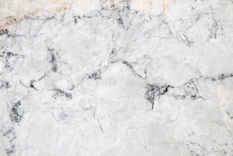 Vit modell för bakgrund för marmortexturabstrakt begrepp arkivbild