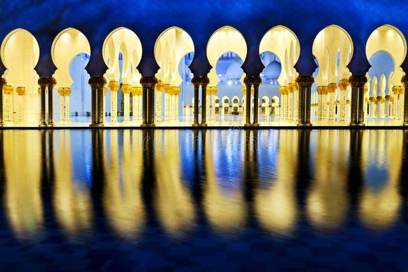 Vit moské fotografering för bildbyråer
