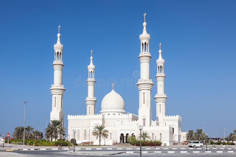 Vit moské i Ajman arkivbild