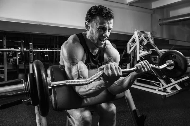 Vit muskulös man som utbildar hans biceps i idrottshallen vid skivstången BW royaltyfria bilder
