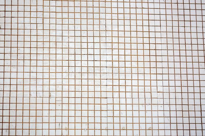 Vit och grå färger det sömlösa fotoet eller tegelstenen för hög upplösning för tegelplattavägg verkliga fotografering för bildbyråer