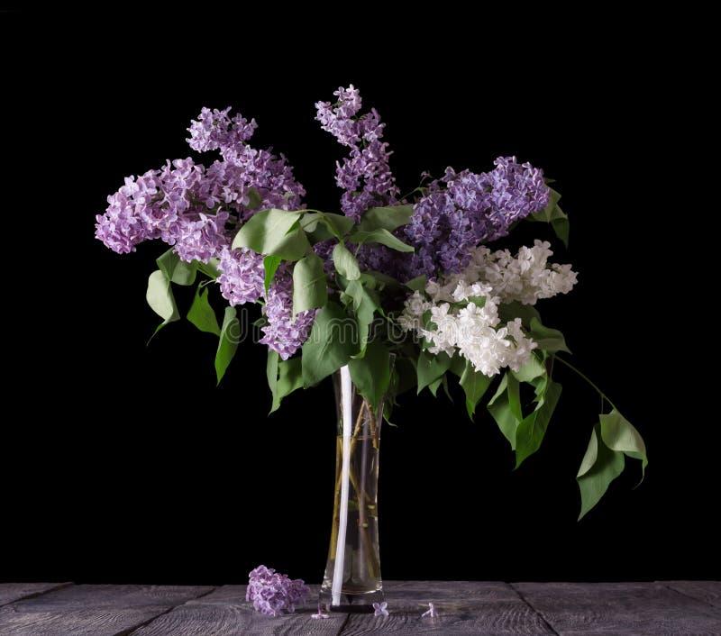 Vit och purpurfärgade filialer av lilan i den glass vasen som isoleras på svart arkivbild