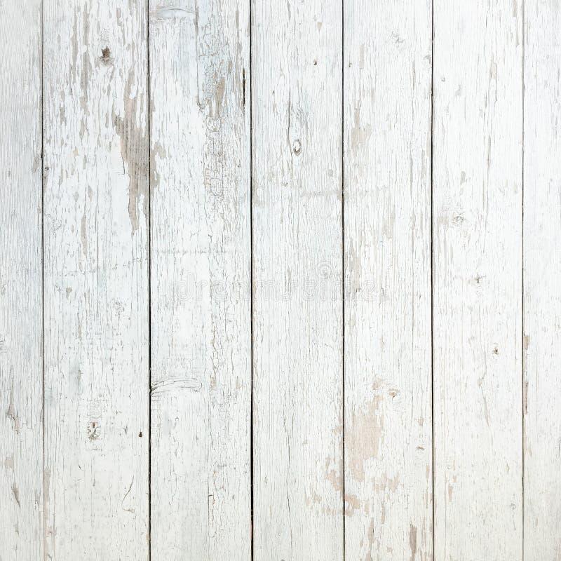 Vit organisk Wood textur ljust trä för bakgrund Gammalt tvättat trä royaltyfri bild