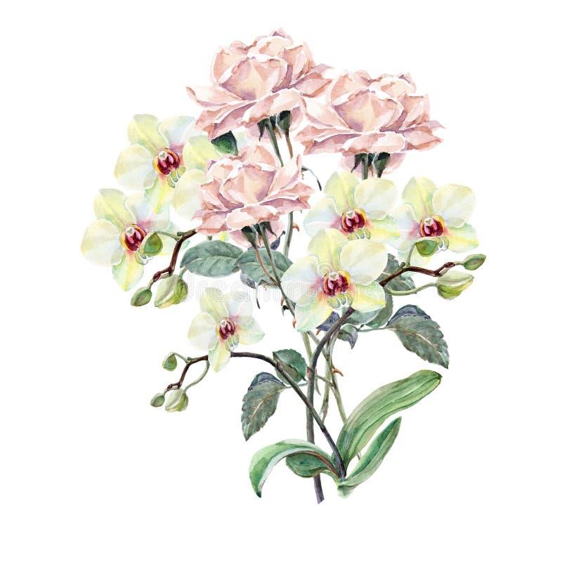Vit orkidé, rosa färgrosblomma på en filial, vattenfärg, bukett royaltyfri illustrationer