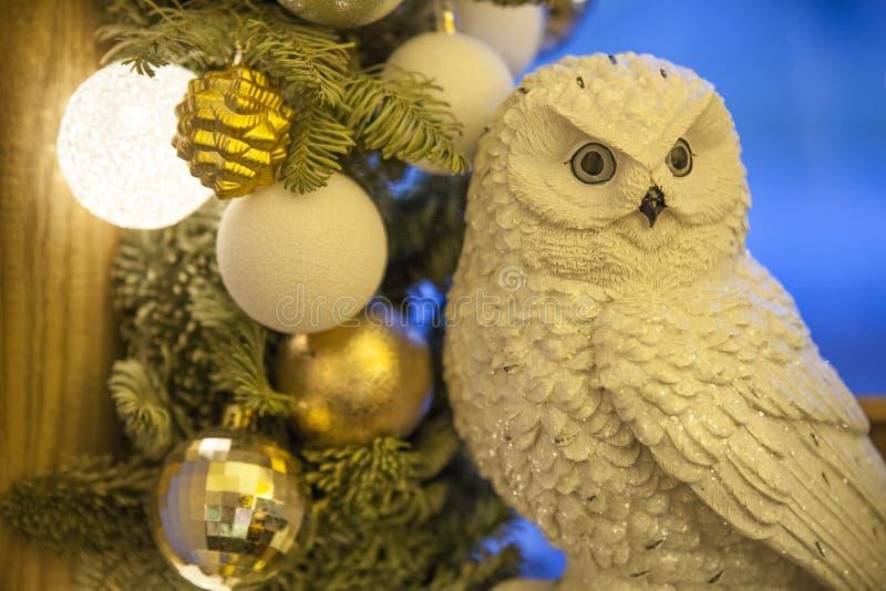 Vit owl arkivfoton