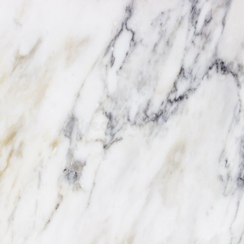 Vit patte för detalj för natur för grunge för granit för marmorstenbakgrund arkivfoto