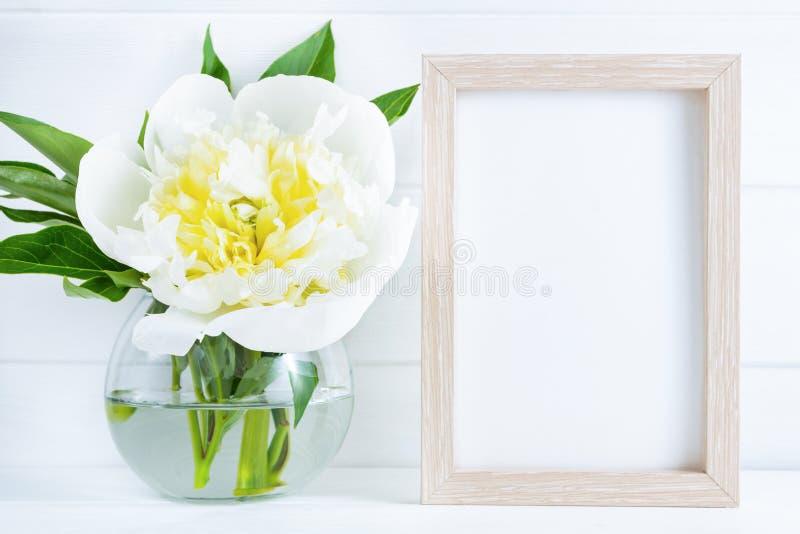 Vit pionblomma i vas på vit träbakgrund med modell- eller kopieringsutrymme royaltyfria bilder