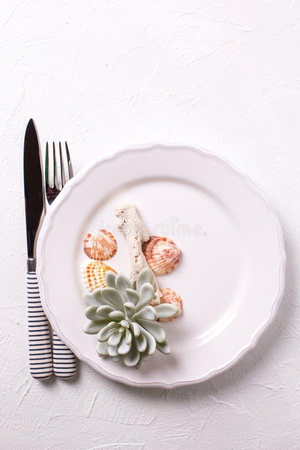 Vit platta, skal, bestick, korall, suckulent echeveria på whit arkivbild