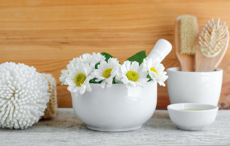 Vit porslinmortel med blommor av kamomillen Växt- medicin, naturliga hemlagade skönhetsmedel och brunnsortbegrepp royaltyfria bilder