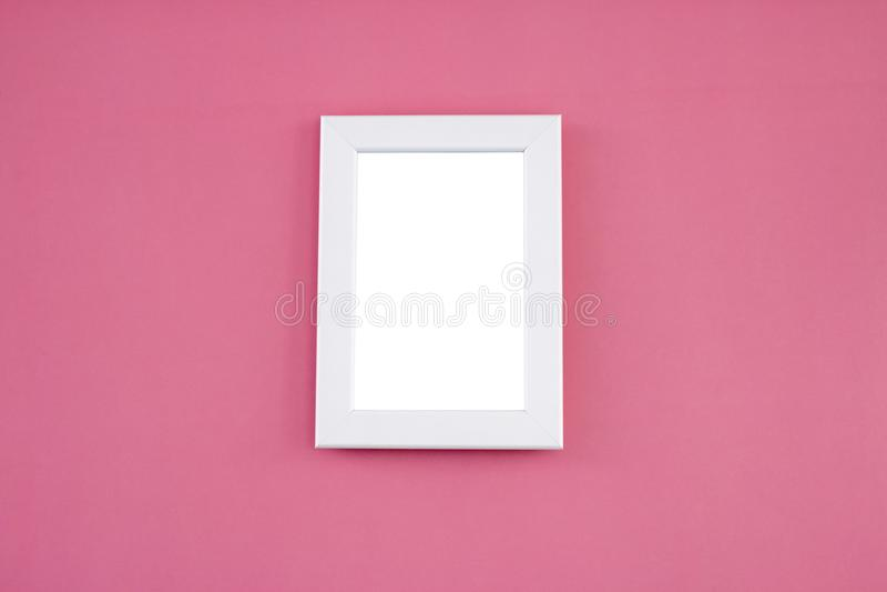 Vit ramåtlöje upp på rosa bakgrund arkivfoton