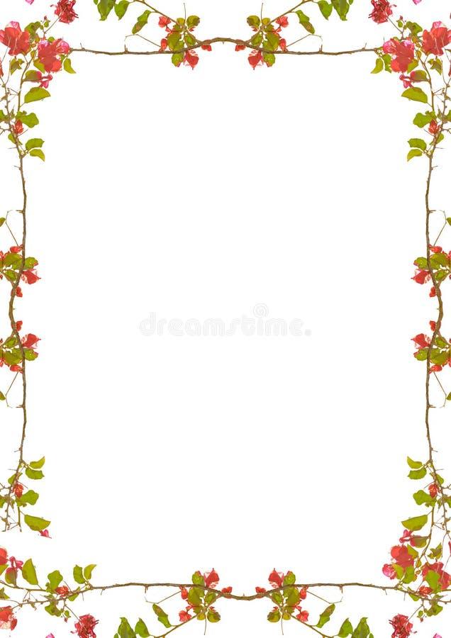 Vit ram med dekorerade blom- gränser stock illustrationer