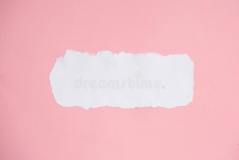 Vit rev sönder papper på bakgrund för rosa färgpapperstextur royaltyfria foton