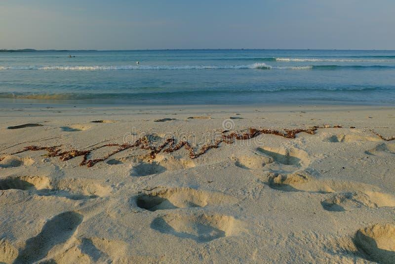 Vit sandö på stranden royaltyfri fotografi