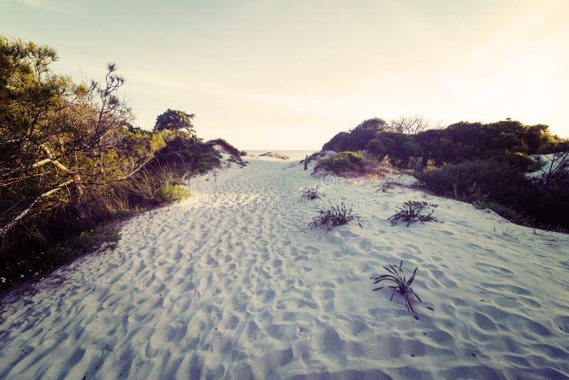 Vit sand på solnedgången royaltyfri fotografi