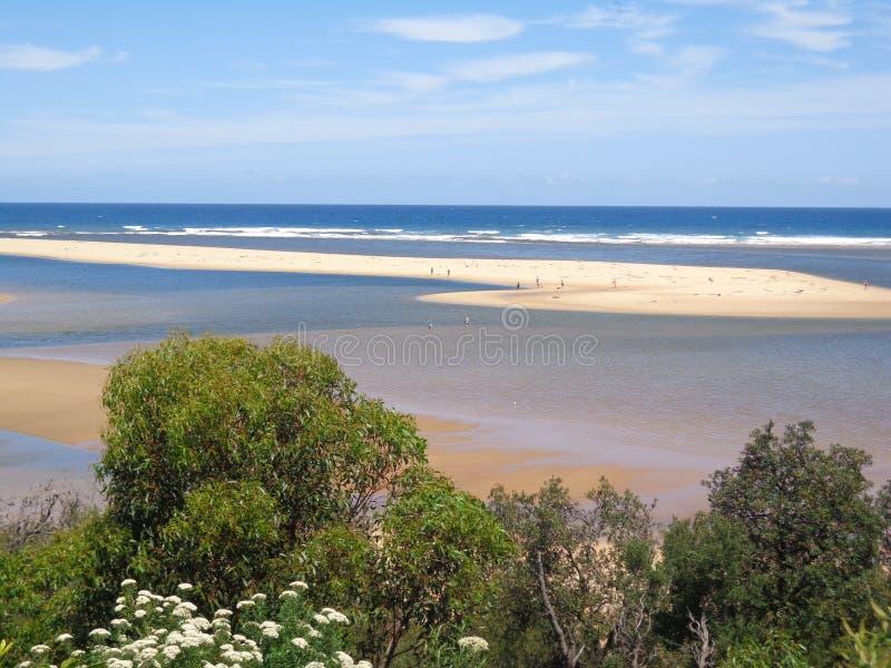 Vit Sandbarö i det blåa havet från buskar royaltyfri bild