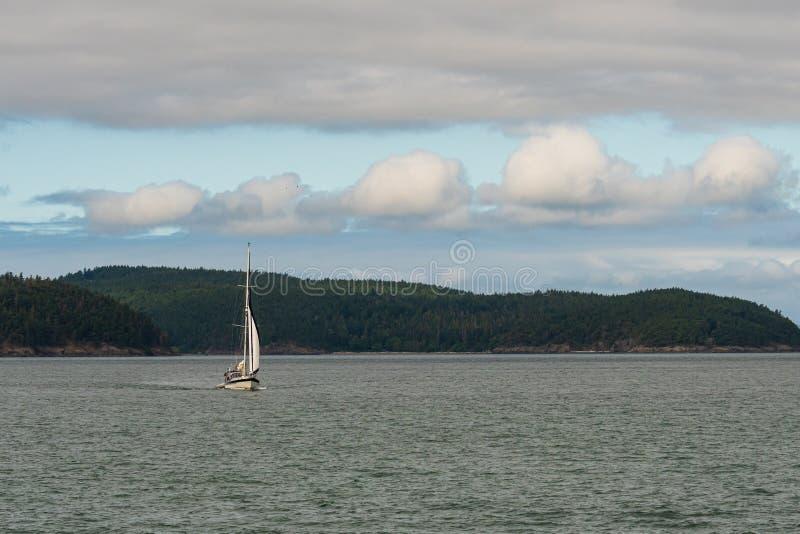 Vit segelbåt som kryssar omkring i det Salish havet och Sanen Juan Islands, forested ö och blå himmel med vita moln i bakgrunden arkivbilder