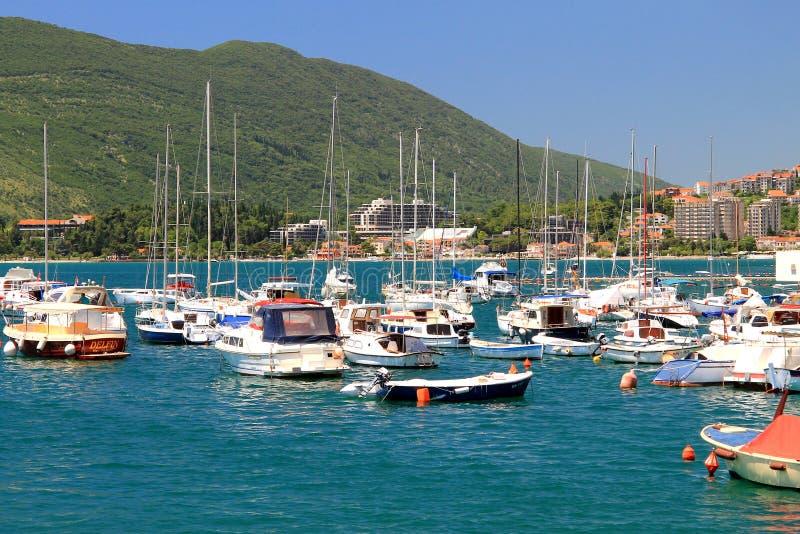 Vit seglar i fjärden av Kotor arkivbild