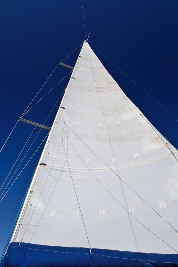 Vit seglar mot den blåa himlen arkivbilder