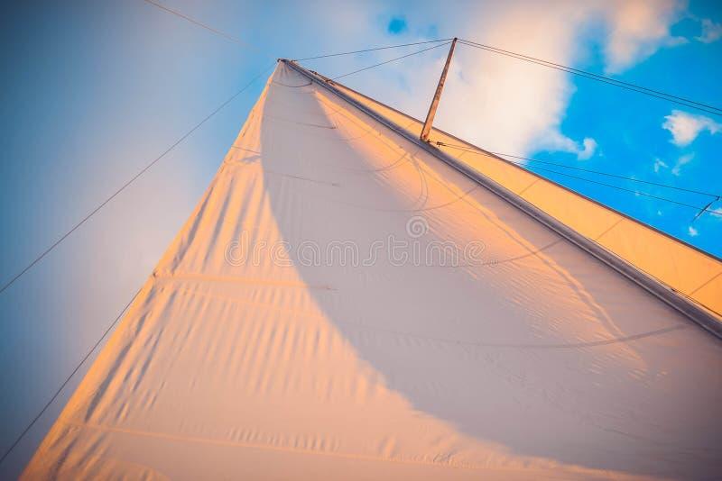 Vit seglar på solnedgången på en bakgrund av blå himmel arkivbild