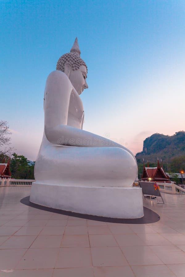 vit staty buddha royaltyfria bilder