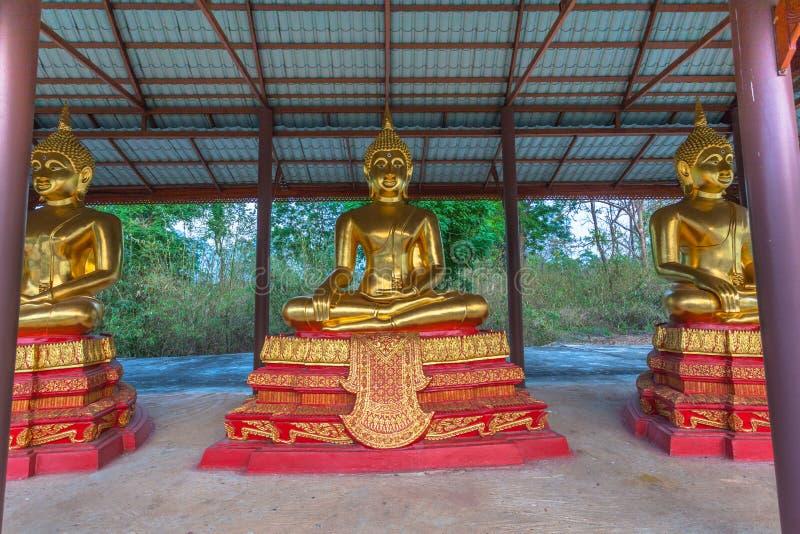 vit staty buddha royaltyfri fotografi