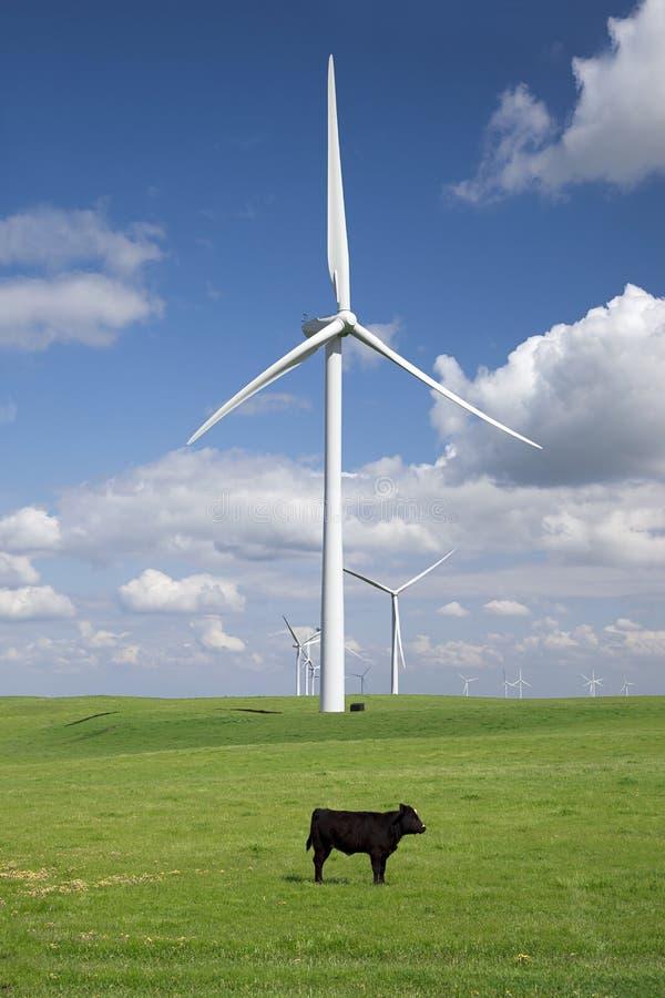 Vit ström som frambringar Windturbiner fotografering för bildbyråer