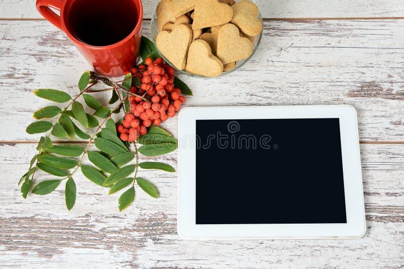 Vit tablet isolerad rönnwhite för bakgrund filial RÖTT CIRKLA Pappers- etikett på band royaltyfria bilder