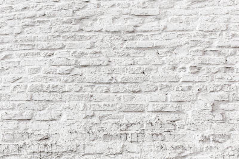 Vit textur för grunge för tegelstenvägg royaltyfri bild