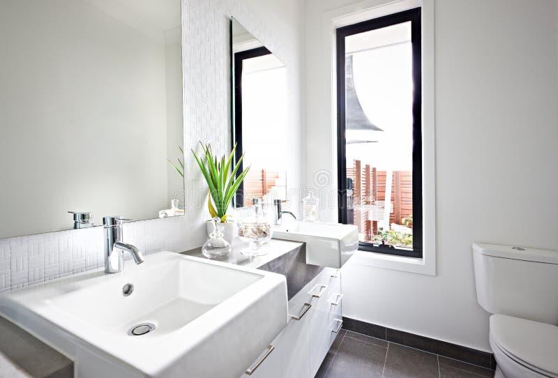 Download Vit Toalettvask Och Spegel Nära En Grön Växt Arkivfoto - Bild av badar, växt: 76700756