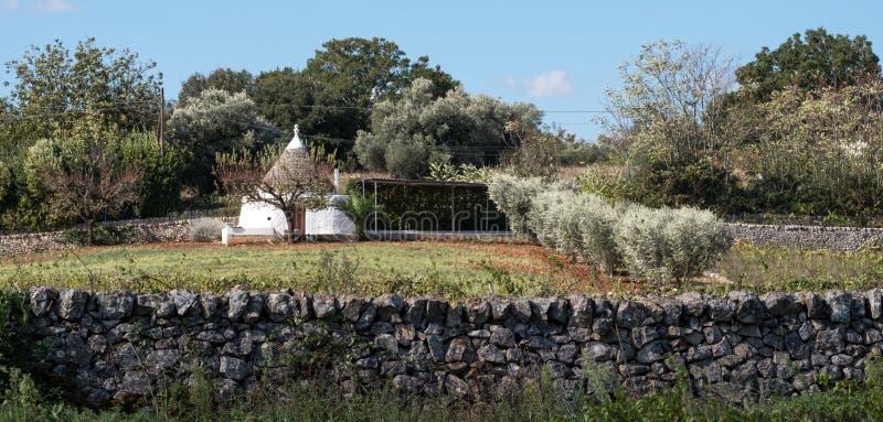 Vit tvättade konisk taklagd byggnad i ett fält på en lantgård i området av Cisternino/Alberobello i Puglia Italien royaltyfria bilder