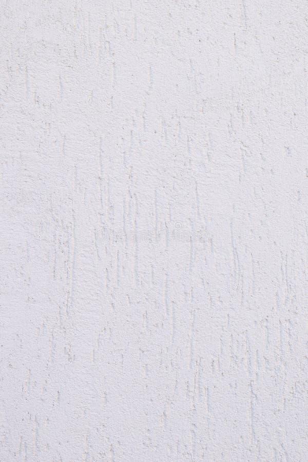 Vit vägg med ett dekorativt beläggningsskäll arkivfoto