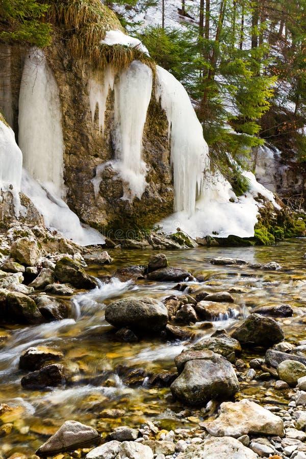 vit vinter för liten vikplats royaltyfri foto