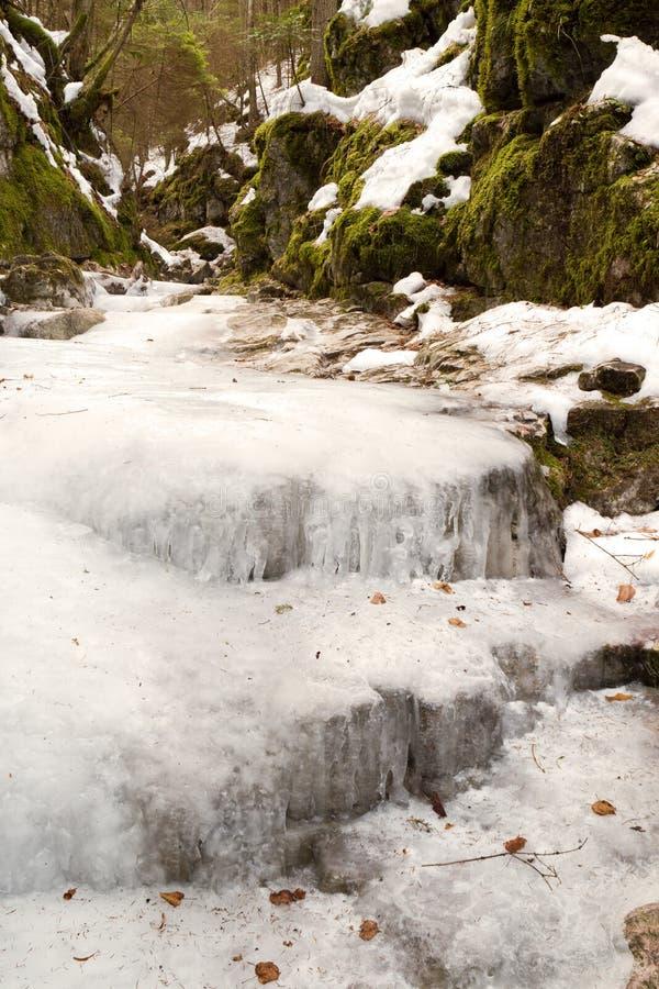 vit vinter för liten vikplats royaltyfri bild