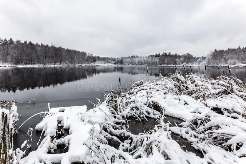 Vit vinterlandskapsjö i skogen royaltyfri fotografi