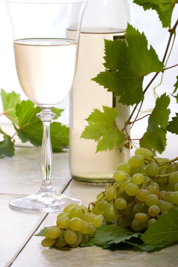 vit wine för druvor royaltyfri foto