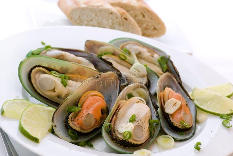 vit wine för musslor royaltyfri fotografi