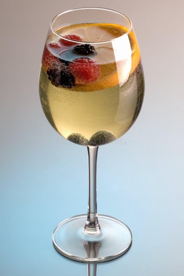 vit wine för sangria royaltyfria foton